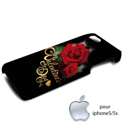 coques iphone 5/5s